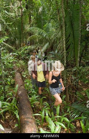 Un gruppo di turisti trekking attraverso il primario della foresta pluviale brasiliana. Foto Stock