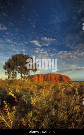 Ayers Rock Uluru Territori del Nord Australia Foto Stock
