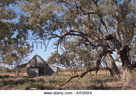 Red Bank Hut visto attraverso gli alberi in Culgoa Floodplain National Park nel centro sud del Queensland Australia Foto Stock