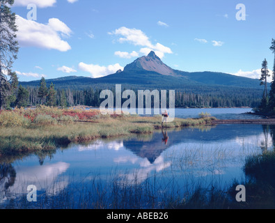 Pescatore a mosca al grande lago Oregon con il Mount Washington in background Foto Stock