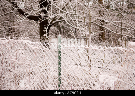 Neve sulla catena collegamento recinto, Ann Arbor Michigan STATI UNITI Foto Stock