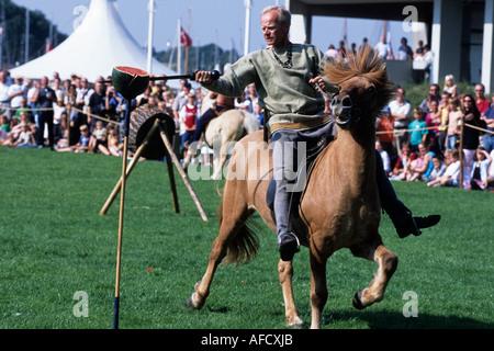 Festival medievale, giochi cavaliere, Museo della Nave Vichinga, Roskilde, Zelanda settentrionale, Danimarca Foto Stock