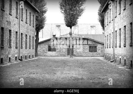 Campo di concentramento nazista di Auschwitz Birkenau, Oswiecim Polonia