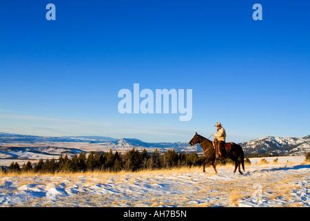 Uomo maturo in sella ad un cavallo in una coperta di neve campo Foto Stock