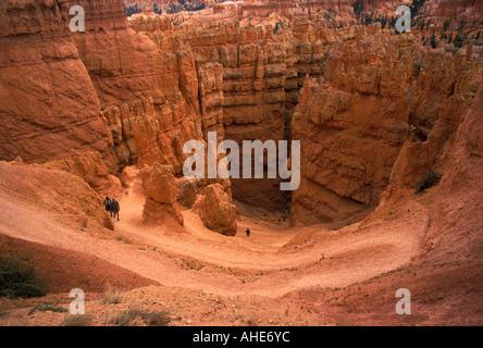 Il sentiero verso il basso per Wall Street, il Bryce Canyon National Park nello Utah Stati Uniti d'America. Foto Stock