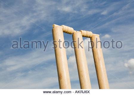 Un ceppo di cricket Foto Stock