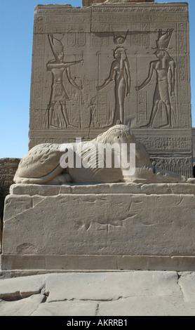 Tempio di Denderah intagli Egitto 2 Foto Stock