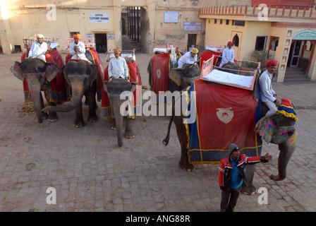 Mahouts (custodi dell'elefante) con i loro elefanti a Amber Fort, a Jaipur, India Foto Stock