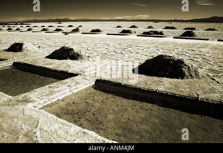 Salinas Grandes, nord-ovest Argentina Foto Stock