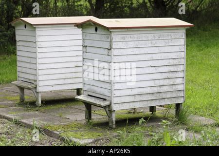 Alveari in legno nell'apiario in danese Museo Agricolo in Gammel Estrup vicino Auning dello Jutland in Danimarca Foto Stock