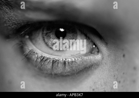 Close up di un occhio umano Foto Stock
