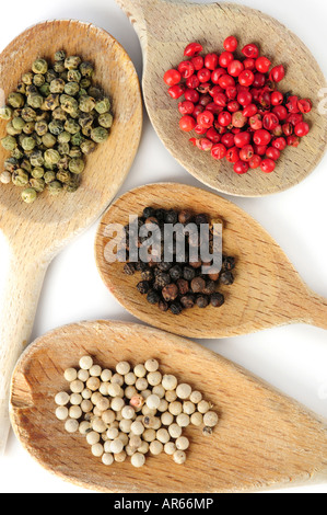 Quattro tipi di grani di pepe in cucina in legno cucchiai Foto Stock