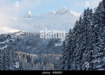 Montagne coperte di neve in Chugach National Forest Seward Alaska Foto Stock