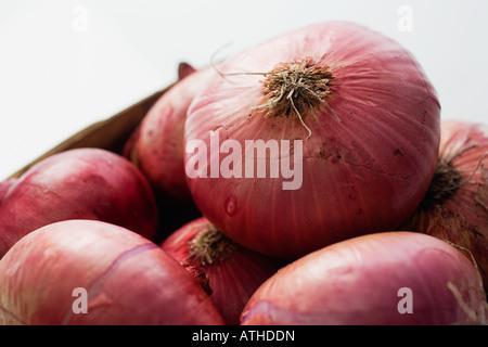 Le cipolle rosse
