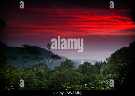 Cieli colorati all'alba visto da Cerro Pirre nel Parco Nazionale del Darién, provincia di Darien, Repubblica di Panama.