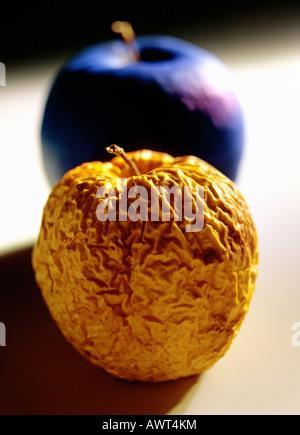 Una stropicciata mela Golden Delicious e un blu apple Foto Stock