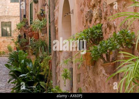 Fiori decorare una strada di Valldemossa, Maiorca, isole Baleari, Spagna, Europa Foto Stock