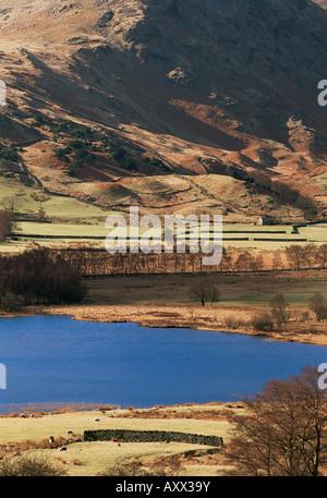 Vista a ovest attraverso piccoli Langdale Tarn, Little Langdale, Parco Nazionale del Distretto dei Laghi, Cumbria, Foto Stock