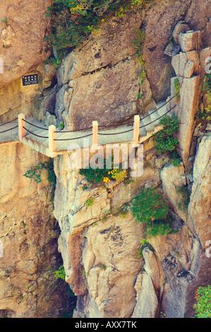 Il sentiero, Nuvola Bianca Scenic Area, Huang Shan (gialle di montagna), il Sito Patrimonio Mondiale dell'UNESCO, Foto Stock