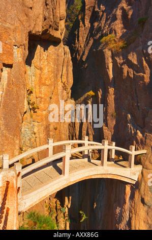 Il Footbridge, Nuvola Bianca Scenic Area, Huang Shan (gialle di montagna), il Sito Patrimonio Mondiale dell'UNESCO, Foto Stock