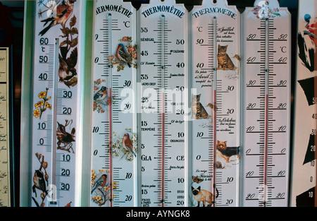 Fila di termometri di alcool Foto Stock