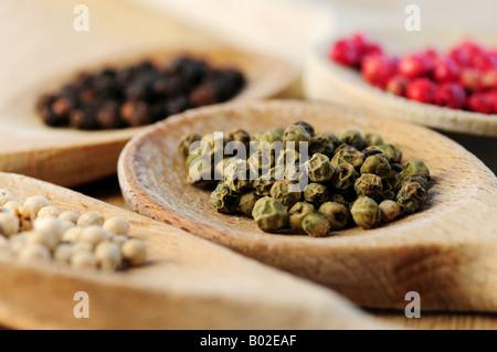 Quattro tipi di grani di pepe in cucina in legno cucchiai macro Foto Stock