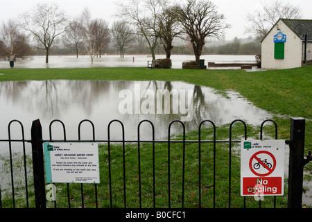 Campo inondato dal fiume Tamigi, Abingdon, Oxfordshire, inverno flood, England, Regno Unito Foto Stock