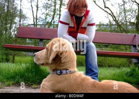 Cane fuori con la donna in background   Welpe mit Frauchen im Hintergrund Foto Stock