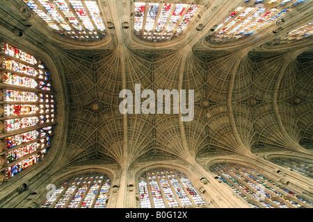 Il soffitto, Kings College Chapel, Cambridge Inghilterra England Foto Stock