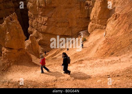 Escursioni a piedi giù per Wall Street, il Parco Nazionale di Bryce Canyon, Utah Foto Stock