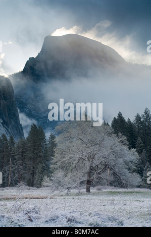 Nuvole sulla mezza cupola all'alba dopo la primavera tempesta di neve Yosemite Valley Yosemite National Park in Foto Stock