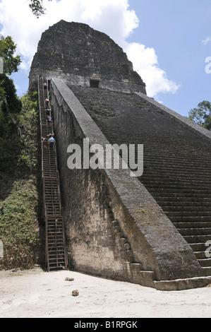 Gradini in pietra e legno ripidi passaggi sul tempio 5, rovine Maya, Tikal, Guatemala, America centrale Foto Stock