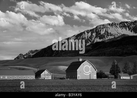 Fienile con Wallowa montagne vicino Joseph Oregon Foto Stock