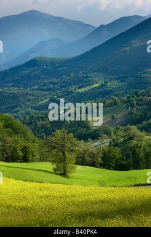 La primavera in Valnerina vicino a Meggiano, Umbria, Italia Foto Stock