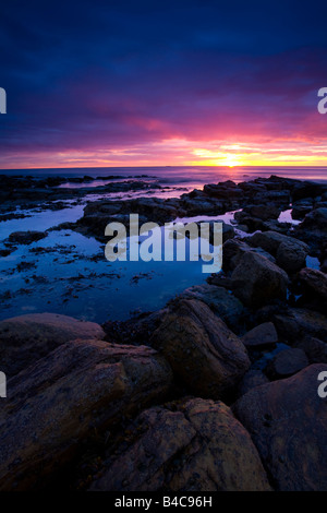 Inghilterra Tyne and Wear Tynemouth Sunrise oltre King Edwards Bay visto da vicino punto di nitidezza Foto Stock