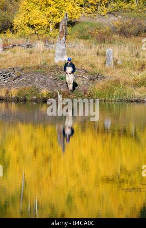 Un uomo di Pesca a Mosca Report di Pesca alla trota di fiume in caduta su un lago di alta montagna in Colorado Foto Stock
