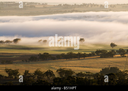 Valle di Avon, York, Australia occidentale, Australia Foto Stock