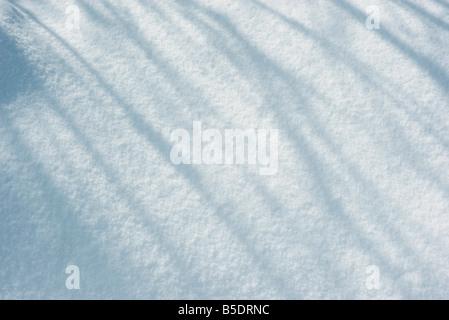 Ombre sulla neve Foto Stock