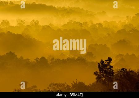 Colori dorati di misty zona collinare con raggio di luce Foto Stock