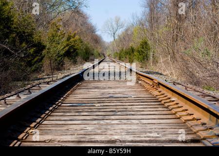 I binari della ferrovia che va fuori nella distanza avanti Foto Stock