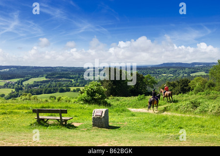 Surrey Hills - piloti del Cavallino, North Downs Way, Surrey, campagna inglese, England, Regno Unito Foto Stock