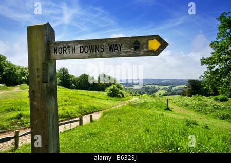 North Downs Way sentiero direzione segno signpost, Newlands Corner, colline del Surrey, Inghilterra, Regno Unito Foto Stock