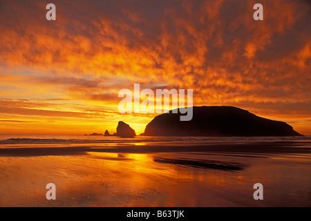 Tramonto a Harris Beach State Park sul southern Oregon Coast Foto Stock