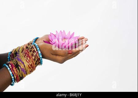 Donna indiana offre un Nymphaea ninfea tropicale fiore nella sua mani a tazza. India Foto Stock