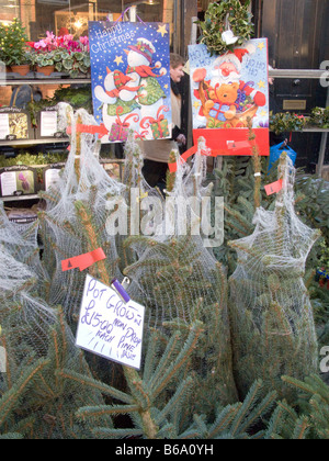Regno Unito.gli alberi di Natale in vendita in una fase di stallo in Columbia Road flower market nella zona est Foto Stock