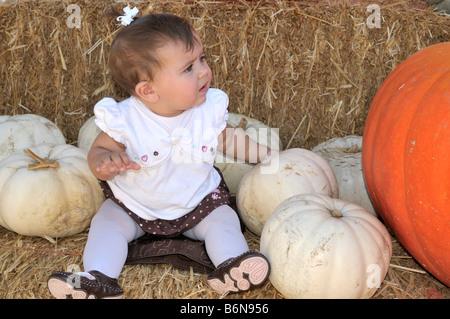 Little Baby girl marveling a grande profondità di colore arancione zucca al suo fianco Foto Stock