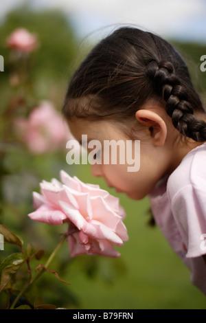 Bambina di cinque anni odori rose Foto Stock