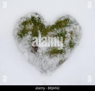 A forma di cuore inciso in scongelamento di neve per erba Foto Stock