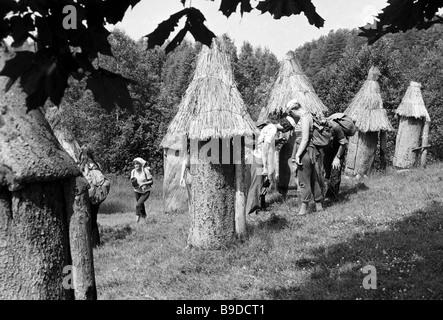 I turisti esaminare gli alveari presso l'antico museo di apicoltura in lituano parco nazionale Foto Stock