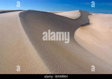 Le dune di sabbia del Lencois Maranhenses Parco Nazionale di Santo Amaro Maranhão Brasile Foto Stock